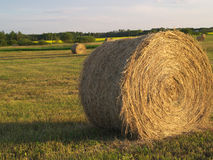 Rolled  bale in  feild dusk Royalty Free Stock Image