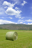 Rolled bale of wheat on farm, American west Stock Photos