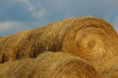 Rolled bales of straw on farm. Rolled bales of straw (or timothy grass) stacked on top of each other at a farm royalty free stock images
