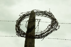 Rolled Barbed Wire Royalty Free Stock Photography