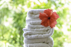 Rolled beach  towels on natural green background Stock Photo
