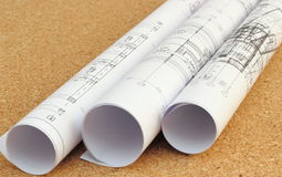 Rolled blueprints. Rolled architectural blueprints on cork board at the office Royalty Free Stock Images