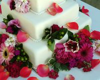 Rolled fondant wedding cake. Three-tiered square wedding cake covered in white rolled fondant and decorated with fresh flowers Royalty Free Stock Photography