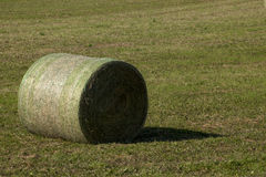 Rolled Hay Bale Royalty Free Stock Photography
