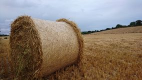 Rolled hay bale Royalty Free Stock Image