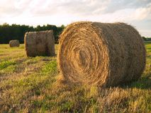 Rolled hay bales at sunset 2 royalty free stock photo