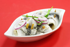 Rolled herring. In a bowl on red background Stock Photos