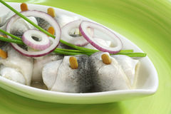 Rolled herring. In a bowl on green background Stock Photography