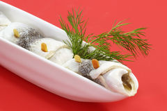 Rolled herring Stock Photos