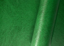 Rolled leather surface Stock Image