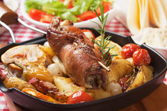 Rolled meat skewer with oven roasted vegetables Stock Images