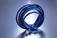 Rolled network cable Stock Image