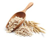Rolled oat. Scoop and pile of oatmeal with its plant stock image