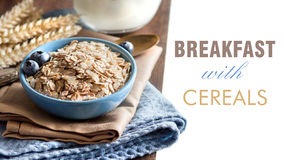 Rolled oats in a bowl with berries Stock Images