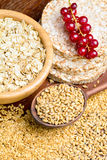 Rolled oats, golden linseeds (flax seeds), whole wheat grains and rice cakes Royalty Free Stock Photo