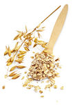 Rolled oats in a spoon Stock Photography