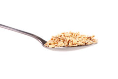 Rolled oats in spoon Stock Image