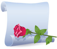 Rolled parchment and rose Royalty Free Stock Image