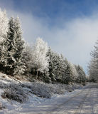 Rolled snowy road Royalty Free Stock Images