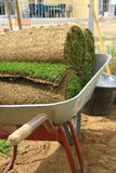 Rolled sod. Stack od rolled grass sod for lawns and gardening royalty free stock photos