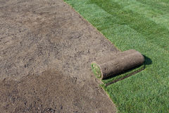 Rolled sod Stock Images