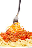Rolled spaghetti on a fork Stock Photography