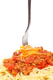 Rolled spaghetti on a fork Stock Image