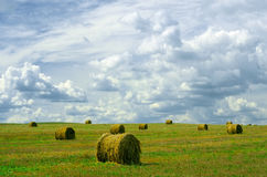 Rolled straw Royalty Free Stock Photos
