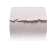 Rolled in toilet paper roll Stock Image