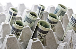 Rolled up dollars. US dollar rolls inside of an egg tray. Horizontal orientation Royalty Free Stock Image