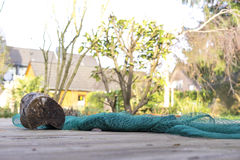 Rolled up fishing net weighed down with log. Low angle view of rolled up fishing net held down with old log on wooden dock with residential buildings in Stock Images