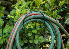 Rolled up garden hose hanging from a fence. A rolled up hose pipe hanging from a fence in the garden image with copy space in landscape format stock images