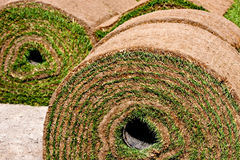 Rolled up grass Royalty Free Stock Images
