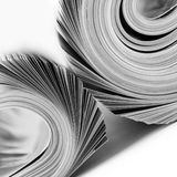 Rolled up magazines. Two rolled up magazines. B/W Stock Images