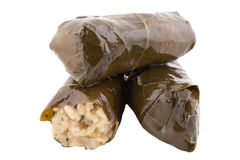 Rolled vine leaves. Stuffed with rice Stock Images