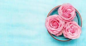 Rollen Sie mit Wasser und rosa Rosenblumen auf blauem Hintergrund, Draufsicht, Fahne Lizenzfreie Stockfotos