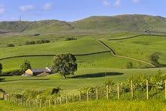 Rollende englische Landschaft am Sommer Lizenzfreies Stockfoto