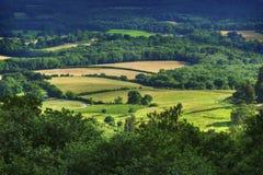 Rollende Felder der Südabstiege mittleren Sommer, englisches Land stockbild