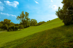 Rollender grüner Hügel unter blauem Himmel stockfotografie
