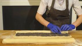 Rollenroulade Herstellung von Poppy Seed Snail stock video footage