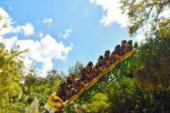 Roller coaster da caça da chita do divertimento em jardins de Bush Os cavaleiros continuam sobre uma mudança direcional imagem de stock royalty free