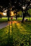 Rollerblader som åker skridskor på en bana i en parkera på solnedgången Arkivbild