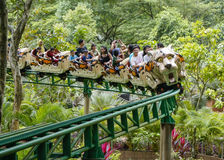 Rollercoasterritter Royaltyfri Bild