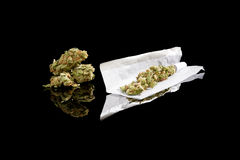 Rolling a cannabis joint. Marijuana bud and cigarette rolling paper on black background. Smoking cannabis, addiction or medical use royalty free stock image