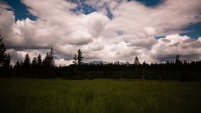 Rolling clouds over montana treeline stock video footage