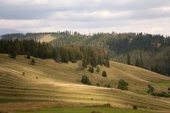 Rolling country. At Liptovska Teplicka, Slovakia Royalty Free Stock Photography