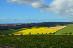 Rolling countryside on the Sussex South Downs Stock Photo