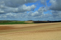Rolling countryside on the Sussex South Downs Stock Photos