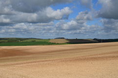 Rolling countryside on the Sussex South Downs Royalty Free Stock Image