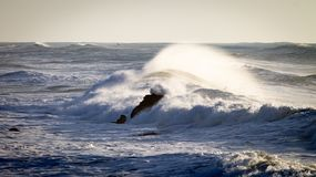 Rolling Crashing Waves in the Sea royalty free stock photos